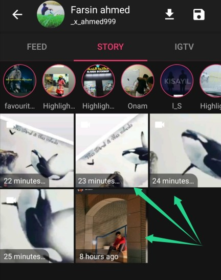 download instagram stories private account